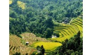 Hanoi Sapa Halong 6D5N package tours for Ms. Mitchell Dixon