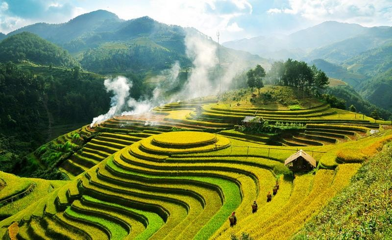 Rice Terrace in Mu Cang Chai